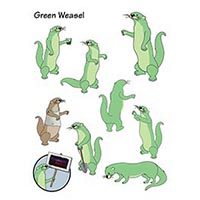 Mascot: Green Weasel Group <a class=nav href=pix/SAMPLES_Photo_ill/pdfs/GreenWeaselGroup.pdf target=new>(PDF)</a>
